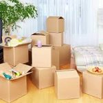 Professional Packers and Movers Pune